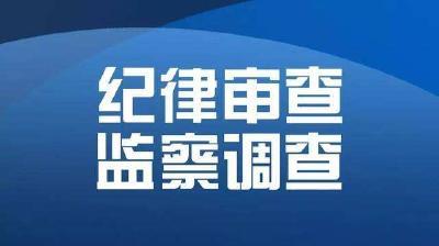 英山县纪委监委推动审查调查工作质效双提升
