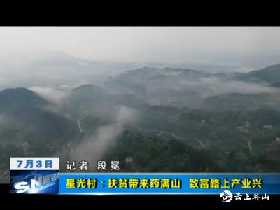 【视频】英山县星光村:扶贫带来药满山    致富路上产业兴
