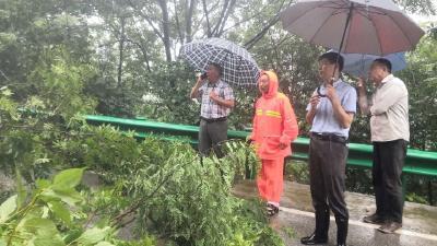 突发!318国道杨柳镇杨树堰村路段出现山体塌方,需经过的车主请绕行!