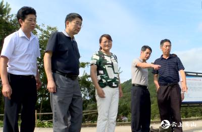 【视频】陈武斌到南河沿线乡镇检查督办防汛救灾工作