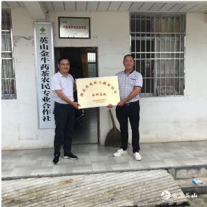 """英山金牛药茶农民合作社荣获""""湖北省残疾人就业创业品牌基地""""称号"""