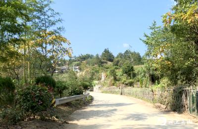 """【视频】英山陶家河乡""""以红带绿""""建设美丽乡村"""