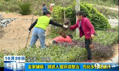 【视频】英山县金家铺镇:狠抓人居环境整治   亮化乡村促振兴