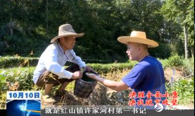 【视频】毛选:为乡亲们的小康路保驾护航