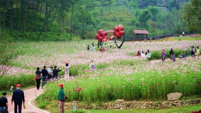 """英山县文化旅游市场逐渐回暖,""""双节""""期间共计接待游客47.75万人次!"""