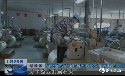 【工业开门红】金马玻纤:加大生产力度   引领企业转型升级