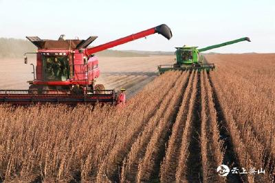 2021年中央一号文件公布 全面推进乡村振兴 加快农业农村现代化