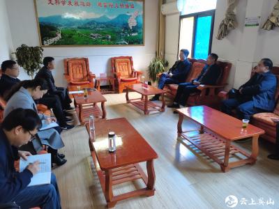 县人大常委会主任李文同志带队  到杨柳湾镇调研人大工作