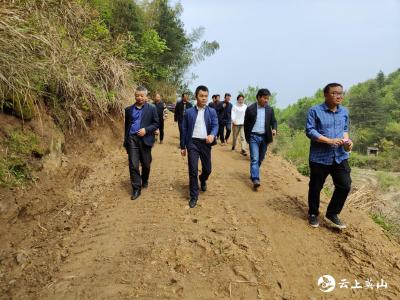 南河镇组织人大代表视察高山水稻产业基地