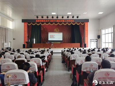 杨柳湾镇召开党史学习教育专题宣讲暨工作推进会
