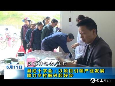 县红十字会:以项目引领产业发展 助力乡村振兴起好步