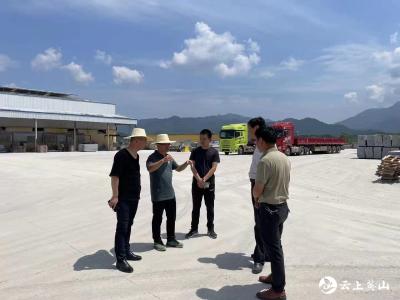 施振宇、贺志东到南河镇调研指导产业发展