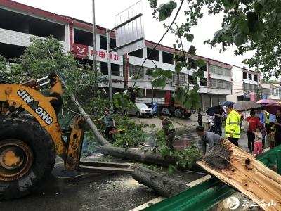 南河镇:暴雨过后,应急抢险不慌乱