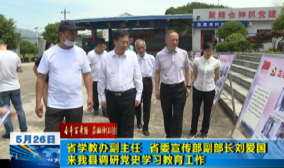 省学教办副主任 省委宣传部副部长刘爱国来我县调研党史学习教育工作