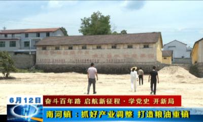 【学党史  开新局】南河镇:抓好产业调整  打造粮油重镇