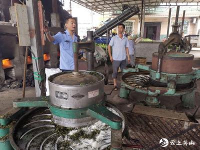 杨柳市场监督管理所开展茶叶专项整治行动