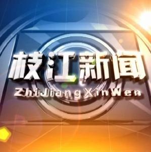 整组 | 2019年1月10日枝江新闻