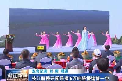 V视| 枝江脐橙开园采摘5万吨脐橙销售一空