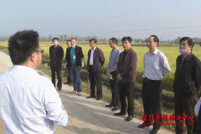 市人大常委会主任会议视察全市农资市场管理工作