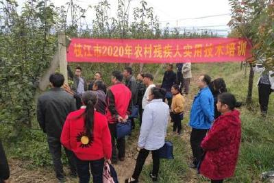 枝江市残疾人联合会举办2020年第一期农村残疾人砂梨种植技术培训班
