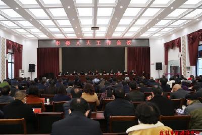 中共枝江市委人大工作会议召开