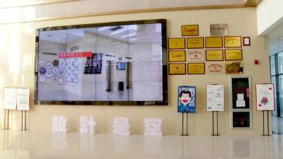 """枝江:科技赋能 激活高质量发展""""一江春水"""""""