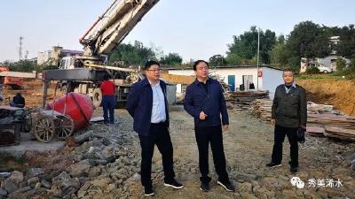付宇到散花示范区、清泉镇现场督办项目建设