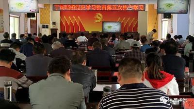 丁司垱镇开展党史学习教育第五次集中学习