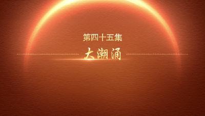 【迎百年 学党史】百炼成钢:中国共产党的100年丨第四十五集  大潮涌