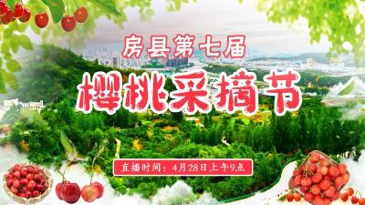 直播标题:直播|房县第七届樱桃采摘节
