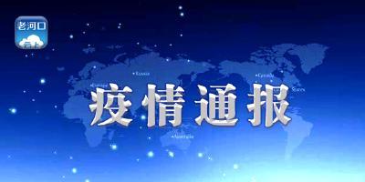 襄阳市境外返襄入襄人员有关情况通报(417)