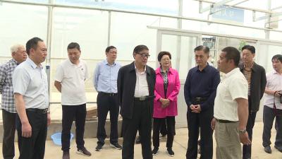 省扶贫开发协会会长、省关工委主任苏晓云来我市调研