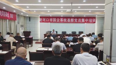 国企系统党员集中培训