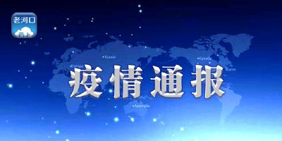 襄阳市境外返襄入襄人员有关情况通报(543)