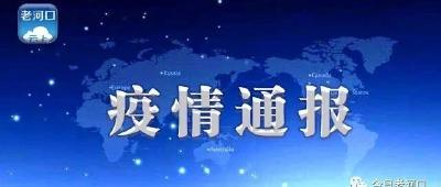 襄阳市境外返襄入襄人员有关情况通报(542)