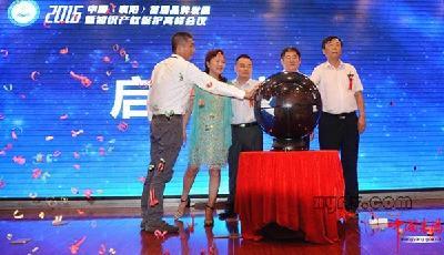 襄阳举办首届品牌发展高峰会议 聚焦知识产权保护
