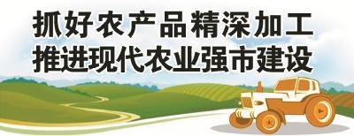 """老河口农产品加工巧做""""精""""文章"""