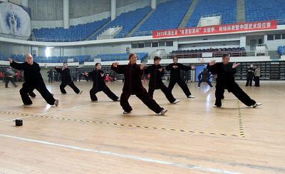襄阳市武当拳法代表队在全省太极拳剑锦标赛上获好成绩