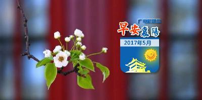 0531早安襄阳 |震撼!襄阳龙舟赛连续三年登陆央视新闻