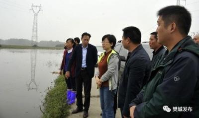 人民至上——樊城区迎战防汛救灾纪实