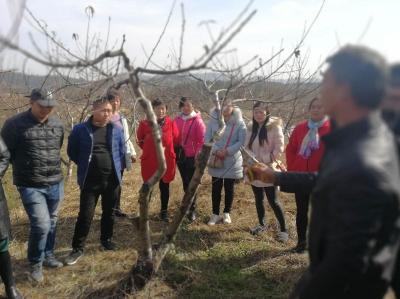 我市启动新型职业农民免费培训