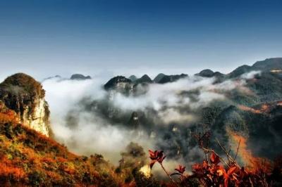 【美景】九路寨:金秋赏红叶,与您共分享