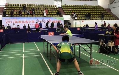 樊城区少年乒乓球选手获省总决赛好成绩