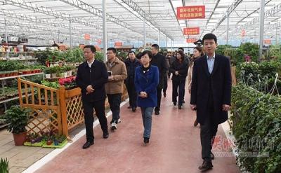 """""""看现场 排部署""""樊城区领导督办四季度项目拉练工作"""