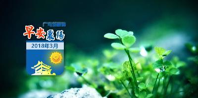 0309早安襄阳 | 襄阳通报16起典型案例!多名干部被处分!