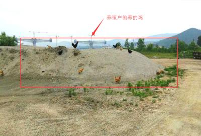 保护汉江在行动,相关部门将依法追究污染汉江水体行为