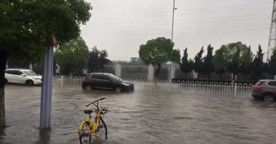 暴雨突降 襄阳不方  市政部门按昨天演练要求有序排涝