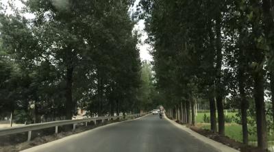 市交通局加快农村公路安全防护工程 保障襄阳人出行安全