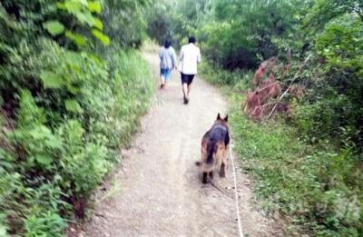 襄阳一妇女走失两天 民警携警犬嗅味找回