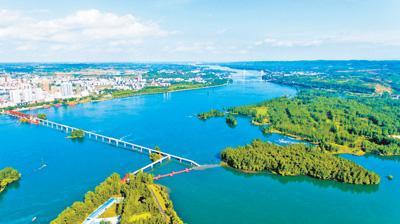 丹江口:绿满水都 生态致富